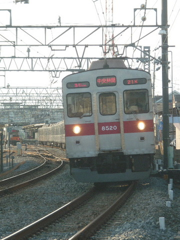 P2030516.JPG