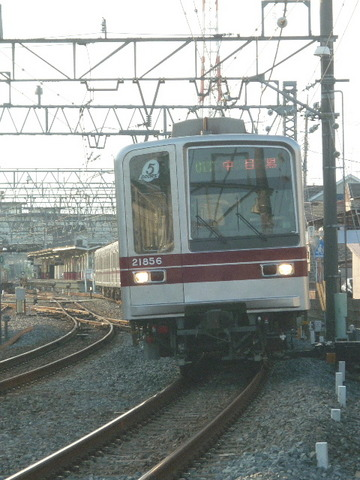 P2030520.JPG